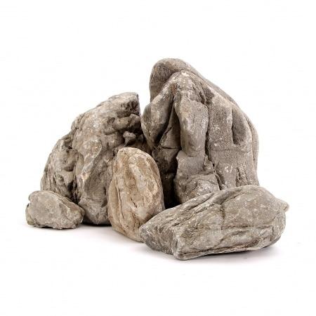 bico steen