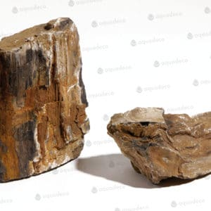 Fosselized wood